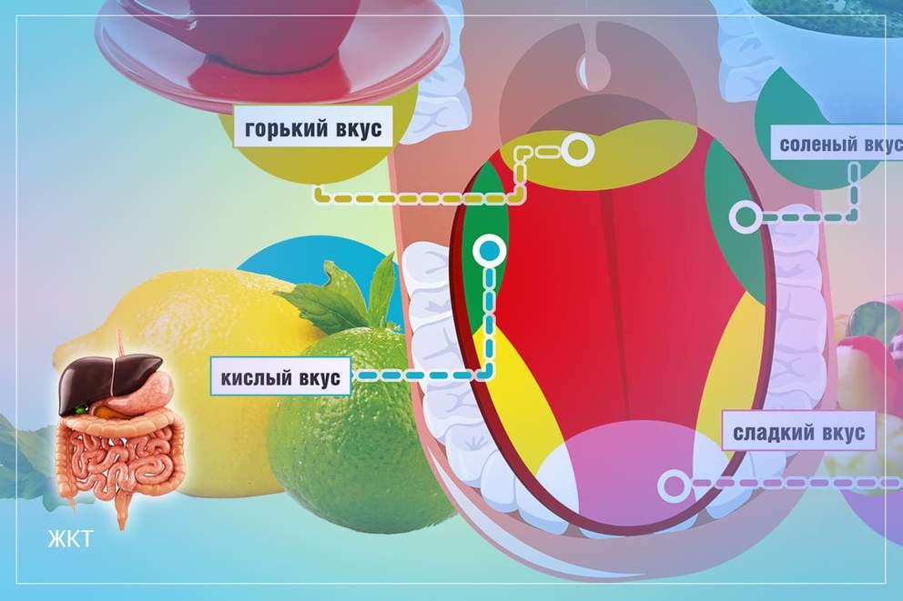 Гастрит и панкреатит — тихая угроза для здоровья