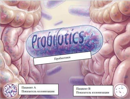 Пробиотики: деньги в унитаз или того хуже?